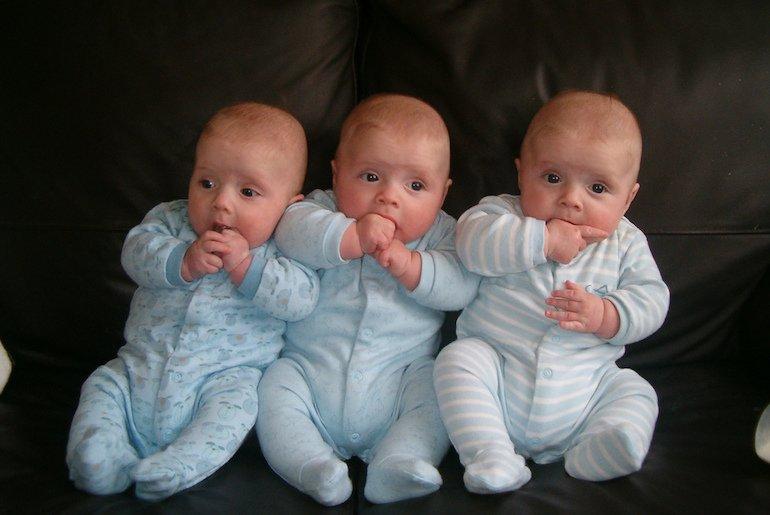allattare tre gemelli