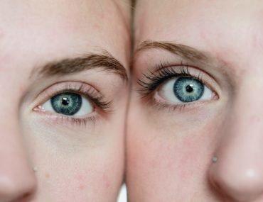 gemelli tanto simili quanto diversi